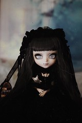 (hauntiing) Tags: pullip pullips doll dolls toy toys laura pulliplaura pullipdoll pullipdolls pullipphotography toyphotography dollphotography