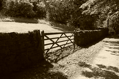 The gate to the field (soxstripy Joe 1954) Tags: sepia