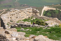 IMG_8013 (Vito Amorelli) Tags: segesta sicily dorictemple greektheater