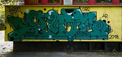 HH-Graffiti 3746 (cmdpirx) Tags: hamburg germany graffiti spray can street art hiphop reclaim your city aerosol paint colour mural piece throwup bombing painting fatcap style character chari farbe spraydose crew kru artist outline wallporn train benching panel wholecar