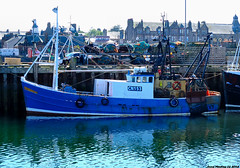 Scotland West Highlands Kintyre Campbeltown docked a fishing trawler called Jeniska CN153 24 June 2018 by Anne MacKay (Anne MacKay images of interest & wonder) Tags: scotland west highlands kintyre campbeltown pier docked fishing trawler jeniska cn153 xs1 boat 24 june 2018 picture by anne mackay
