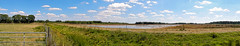 Fochteloër Veen, Drenthe - The Netherlands (N3497) (Le Photiste) Tags: clay fochteloërveendrenthethenetherlands panoramaview panorama nikon nikoncoolpixs9900 nature naturesprime rainbowofnaturelevel1red planetearthnature planetearth ngc horses lake landscape clouds cloudy perfectview fence nederland afeastformyeyes aphotographersview autofocus artisticimpressions blinkagain beautifulcapture bestpeople'schoice creativeimpuls cazadoresdeimágenes digifotopro damncoolphotographers digitalcreations django'smaster friendsforever finegold fairplay greatphotographers groupecharlie clapclap hairygitselite ineffable iqimagequality infinitexposure interesting inmyeyes lovelyshot lovelyflickr livingwithmultiplesclerosisms myfriendspictures mastersofcreativephotography niceasitgets photographers prophoto photographicworld photomix soe simplysuperb saariysqualitypictures showcaseimages simplythebest simplybecause thebestshot theredgroup thelooklevel1red vividstriking wow worldofdetails wildlife water waterscape yourbestoftoday beautiful meadow panoview pano