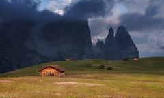 Seiser Alm (Dreamy Pixel) Tags: alm alms alpe alpine alps background beautiful beauty blue cows di dolomites dolomiti europe fall farmland grassland green group hiking idyllic italy landscape langkofel meadow mountain mountains natural nature outdoor park pasture peaceful plateau rock rural scenic sciliar seiser siusi sky south southern stunning summer sunrise sunset travel tyrol view ngc