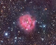 The Cocoon Nebula (Astro Gabe) Tags: cocoonnebula nebula emissionnebula darknebula reflectionnebula stars space cygnus gas dust red black ic5146 qsi apmach1 pixinsight apcc sgp phd2 at10rct astrometrydotnet:id=nova2711894 astrometrydotnet:status=solved