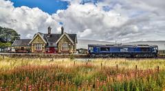 66426 at Ribblehead (robmcrorie) Tags: drs direct rail services 66426 6k05 ribblehead station rain class 66 train railway settle carlisle yorkshire nikon d850 railfan