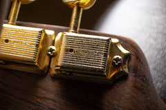 Schecter tele closeup (Jason Gehring) Tags: guitar neck closeup tuners schecter telecaster rust patina strings gitarre sound electric humbucker