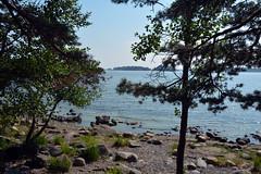 Uutela nature park in Vuosaari, Helsinki. (JohntheFinn) Tags: helsinki finland europe uutela vuosaari sea trees nature uutelanluontopolku