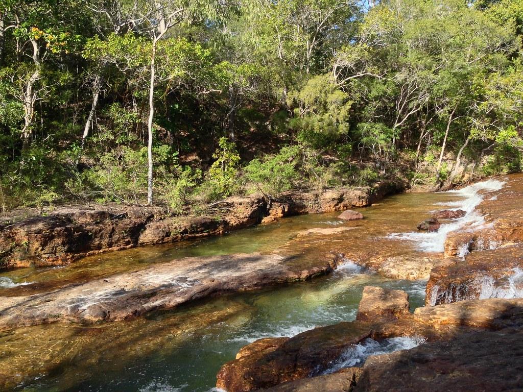 Jardine River National Park by Royal Botanic Garden Sydney, on Flickr