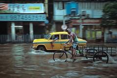 #panning #redmi4 #phonephotography (animeshsamanta1) Tags: phonephotography redmi4 panning kolkata indiaphotoproject indian global natgeo indiaphotographyhub mobilephotography