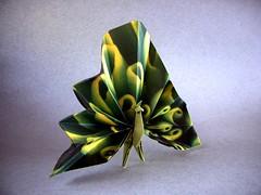 Pavo Real (Peacock) - Mathieu Gueros (Rui.Roda) Tags: origami papiroflexia papierfalten pavão pavo real peacock mathieu gueros