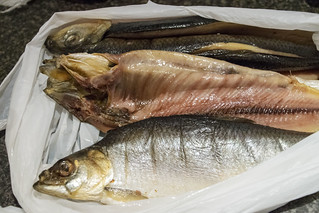 DSC_6542 London Billingsgate Fish Market Kippers a whole herring a small oily fish that has been split in a butterfly fashion from tail to head along the dorsal ridge gutted salted or pickled and cold-smoked over smouldering woodchips