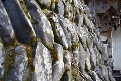 stone wall (Hayashina) Tags: japan ibaraki stonewall texture