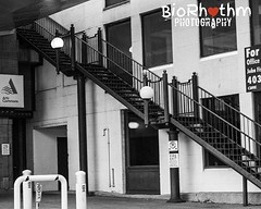 """""""Fool, death ain't nothin' but a heart beat away I'm livin' life do or die, what can I say?"""" #stairs #streetphotography #street #climb #instablackandwhite #blackandwhite #bandw #Rebel #biorhythmphotography (biorhythmphotography) Tags: ifttt instagram fooldeathaintnothinbutaheartbeatawayimlivinlifedoordiewhatcanisay stairs streetphotography street climb instablackandwhite blackandwhite bandw rebel biorhythmphotography"""