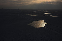 illusion islands (Mindaugas Buivydas) Tags: lietuva lithuania color winter february memelland kuršiųmarios curonianlagoon delta nemunasdelta nemunasdeltaregionalpark nemunodeltosregioninisparkas mindaugasbuivydas