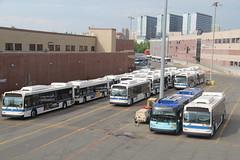 IMG_8883 (GojiMet86) Tags: mta nyc new york city bus buses 2009 2015 2017 orion vii ng hlf xd40 xd60 4180 4188 4573 6021 7371 casey stengel depot