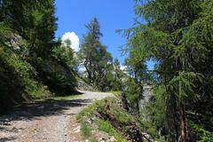 Ovronnaz (bulbocode909) Tags: valais suisse ovronnaz montagnes nature forêts arbres mélèzes paysages printemps chemins nuages bleu vert