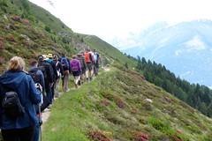 Wanderung von der Furkelhütte (Rifugio Forcola) zur Schäferhütte. (Süßwassermatrose) Tags: 2018 stilfs stelvio südtirol italien trafoi trafoital trentinoaltoadige nationalpark natur nationalparkstilfserjoch parconazionaledellostelvio himmel berg gras abhang