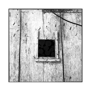 wood • balanod, bresse • 2018