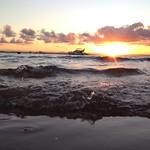 Mergulho fim de tarde... thumbnail
