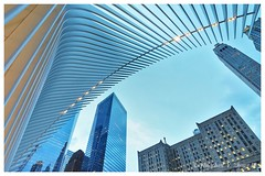 Oculus (Jonathan Zhong 1) Tags: nyc downtownmanhattan manhattan oculus worldtradecentre ilovenewyork newyorkcity