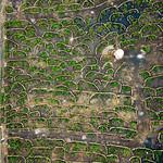 Bird eye view of winery fields with stone fences / Vogelperspektive von Weinkellereifeldern mit Steinz‰unen thumbnail