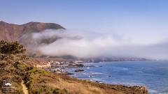 Fog (allentimothy1947) Tags: bigsur coastalhighway monetereycounty breakers cliffs cow fog grazing hwy1 land landwater landscape ocean pacificocean reopened rocks sea shore sky waves