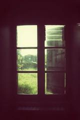 Through the window in the country house 🏡 (LUMEN SCRIPT) Tags: vintage retro window dslr nikon nikond3300 tree perspective