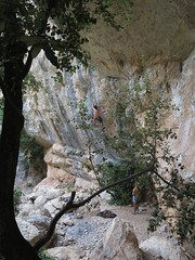 IMG_7105 (sebastien_prat) Tags: grimpe escalade joncas stguilhemledésert