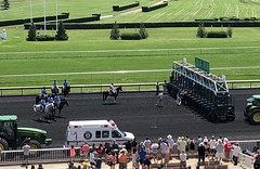 Starting Gate (Crawford Brian) Tags: startinggate arlington racing horseracing horse ambulance tractor track people grass turf illinois
