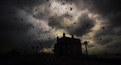 Breaking Dawn !!! (Debmalya Mukherjee) Tags: debmalyamukherjee gatewayofindia mumbai sunrise canoneos 1018mm silhouette dawn