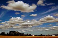 Backyard view. (Frederic Tobias) Tags: enghien hainaut tamron2470 canon80d summervibe summer farmland landscape cloudy clouds