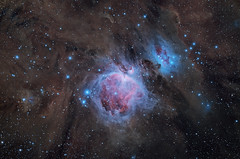 M42 Orion Nebula TAK FSQ-130ED QHY367C (William Hutton) Tags: qhy qhy367c sky astronomy astrophotography astroimaging orion