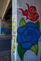 IMGP5754 Flowers on the concrete (Claudio e Lucia Images around the world) Tags: sigma street art graffiti milano porta garibaldi tag muro murales murale wall paintedwall sigma1020 pentax pentaxk3ii pentaxart cavalcavia graffito photomilano bussa cavalcaviabussa