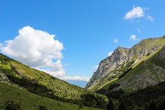 Breathtaking Valley - Rifugio del Freo (david_entertainment) Tags: forest valley foresta valle vallata verde green bosco wood woods sky clouds cloud cielo nuvole nuvola roccie montagne rocks mountain mountains montagna passeggiata