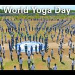 20180621 - World Yoga Day (3)