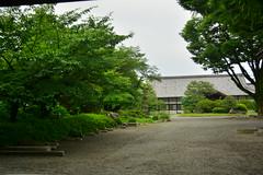 DSC_0010 (sxcxxhx) Tags: japan osaka kyoto hydrangea flower trip voyage 日本 大阪 京都 旅行