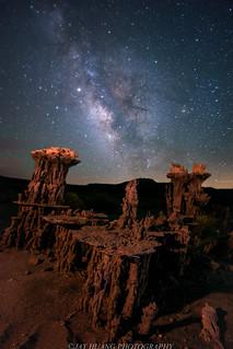 Night Falls on Sand Creatures