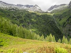 P6230067 (turbok) Tags: berge landschaft putzenalm sölktal c kurt krimberger