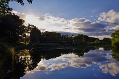 Riverside scene (Sundornvic) Tags: river nature skies evening light riversevern reflection reflections reflected clouds trees