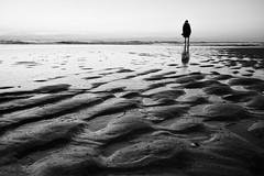 Fade to black (Jens Steidtner) Tags: bw blackandwhite monochrome people beach water sea outdoors sand thenetherlands mood coast