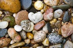 Rocks in the rain! (ineedathis, Everyday I get up, it's a great day!) Tags: pebbles rocks colorful granite metamorphicrocks marble mica newenglandgreenrocks onyx heart pineneedles pond nikond750
