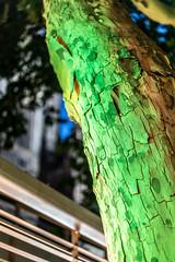 Toxic Three (BobbesStar) Tags: baum nacht grün neon licht