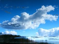 Sky Reflected in Lake