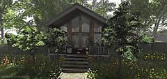 The Cabin Life-Close (Frankie Jade Designs) Tags: hive sl hivesl compulsion second life flowers dust bunny heartgardencenter botanical frankiejademontoya sunflowers violets