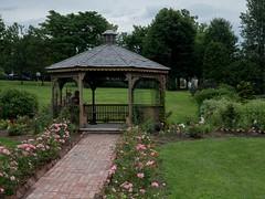 P7300892 (Copy) (pandjt) Tags: binghamtonny binghamton ny travelogue cutlerbotanicgarden garden scenicgarden cutlergarden botanicgarden