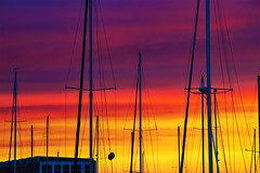 Vallejo Yacht Club EXPLORE 8-14-2018 (joe chan photos) Tags: joechanphotossacramentoca sunset mast sailboats redsky clouds redclouds colorful vallejo