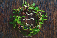 Natural Round Wreath Frame on Wooden Background. Greeting Card (Kseniya Polonskaya) Tags: wreath background frame natural flowers wooden decor elements herbal nature round christmas woodland plant branch green holiday design scrapbooking decoration ornament season rustic thanksgiving vintage decorative craft space autumn winter seasonal year berry garland old fall diy berries texture copy greeting gift dark forest card webdesign wall country style countryside