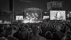 10-9-8-7-6-5-4-3-2-1 Midnight Oil live, November 2017 (5) (geemuses) Tags: midnightoil band music liveband livemusic outdoorconcert rockmusic thedomain sydney nsw performance light nightlight contrast bandw blackandwhitebw color colours