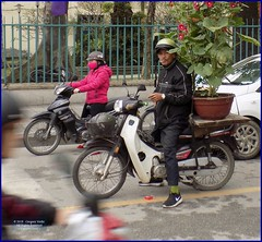 Vietnam, Hue Flower Delivery 20180213_112433 DSCN3198 (CanadaGood) Tags: asia asean seasia vietnam vietnamese hue traffic fashion tree fence scooter flowers motorcycle smoking people person canadagood 2018 thisdecade color colour
