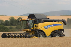 New Holland CX8070 Combine Harvester cutting Winter Barley (Shane Casey CK25) Tags: new holland cx8070 combine harvester cutting winter barley cnh nh yellow newholland castletownroche grain harvest grain2018 grain18 harvest2018 harvest18 corn2018 corn crop tillage crops cereal cereals golden straw dust chaff county cork ireland irish farm farmer farming agri agriculture contractor field ground soil earth work working horse power horsepower hp pull pulling cut knife blade blades machine machinery collect collecting mähdrescher cosechadora moissonneusebatteuse kombajny zbożowe kombajn maaidorser mietitrebbia nikon d7200